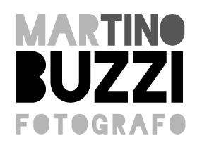 Martino Buzzi logo